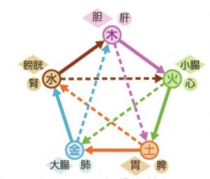 五行論の図